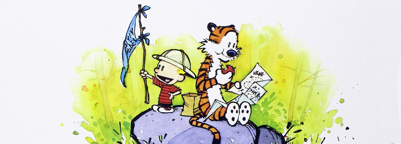 Calvin and Hobbes Books in Order